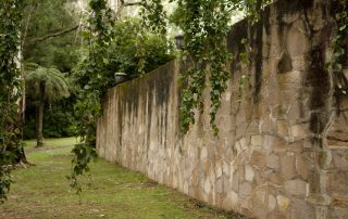Gothic Wall under Weeping Beech Tree
