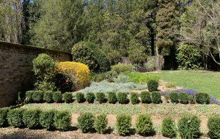 Socrates Garden beds